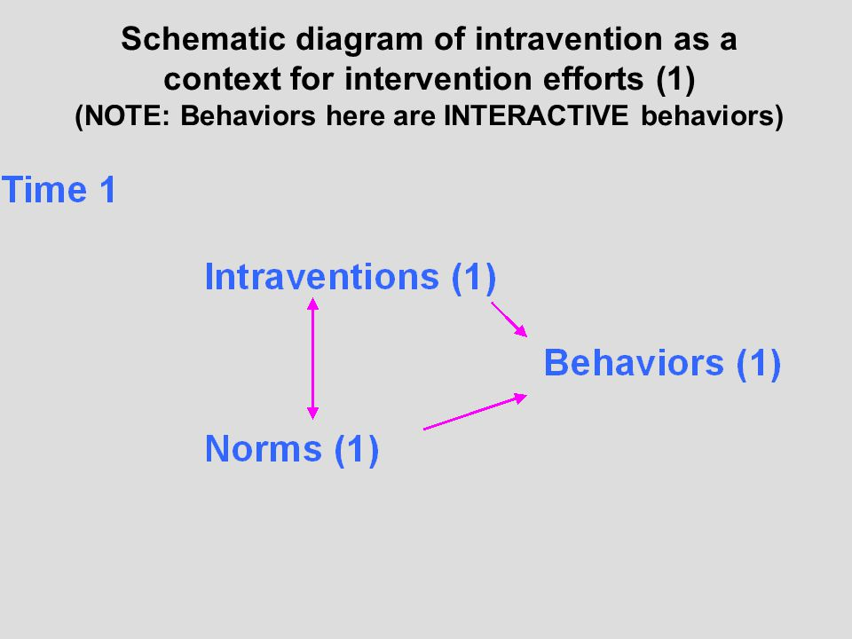 Schematic diagram of intravention as a context for intervention efforts (1) (NOTE: Behaviors here are INTERACTIVE behaviors)