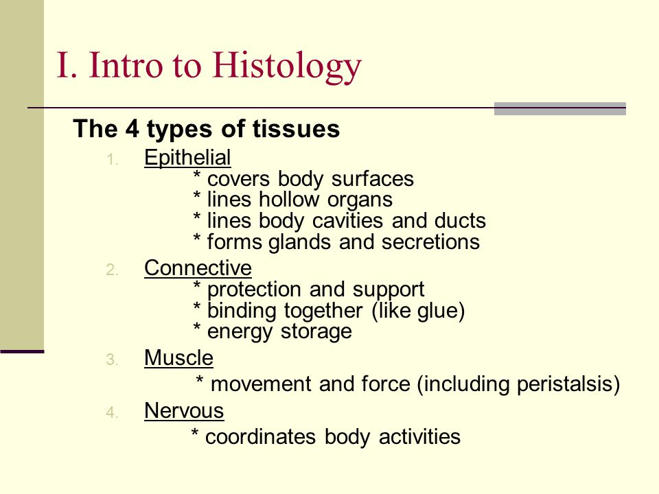 I. Intro to Histology The 4 types of tissues