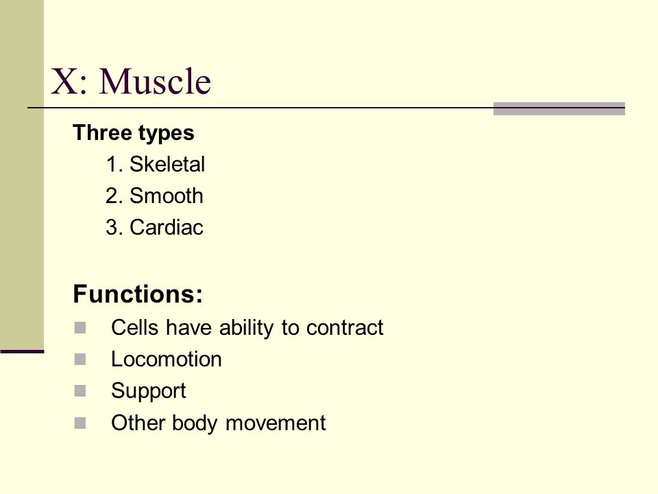 X: Muscle Functions: Three types 1. Skeletal 2. Smooth 3. Cardiac