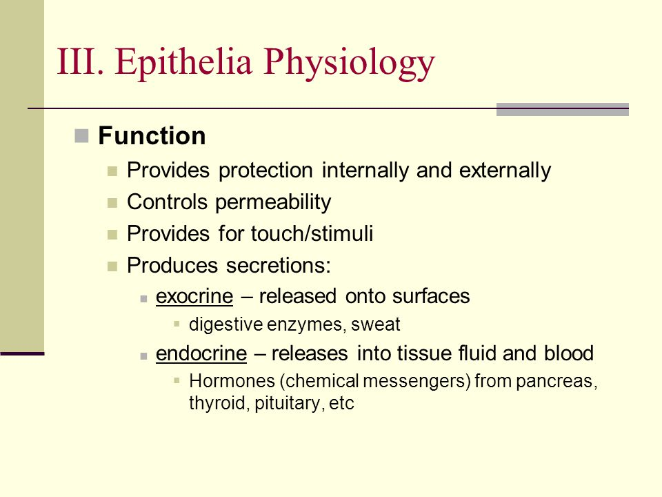 III. Epithelia Physiology