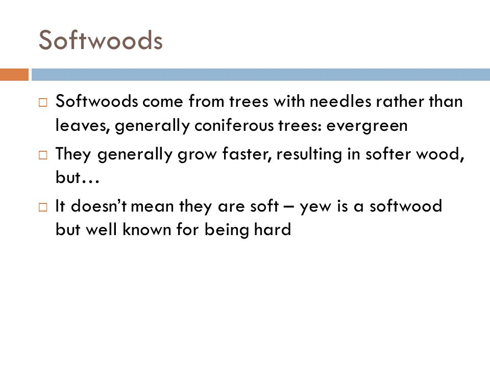 Softwoods Softwoods come from trees with needles rather than leaves, generally coniferous trees: evergreen.
