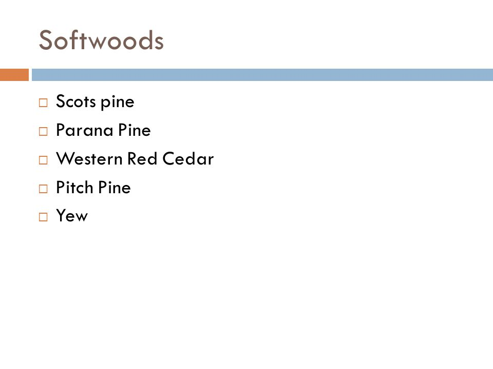 Softwoods Scots pine Parana Pine Western Red Cedar Pitch Pine Yew