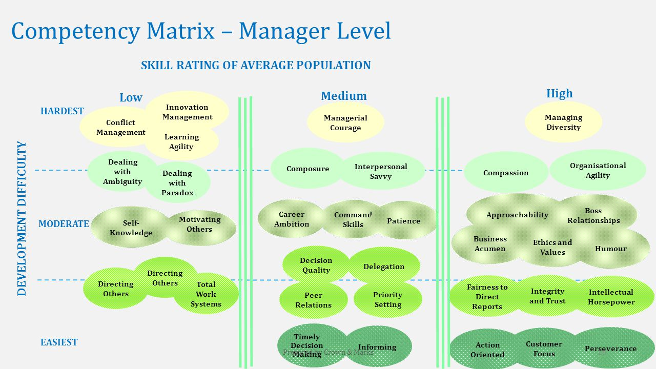 Competency Matrix – Manager Level