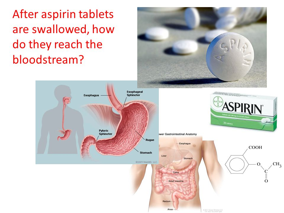 After aspirin tablets are swallowed, how do they reach the bloodstream