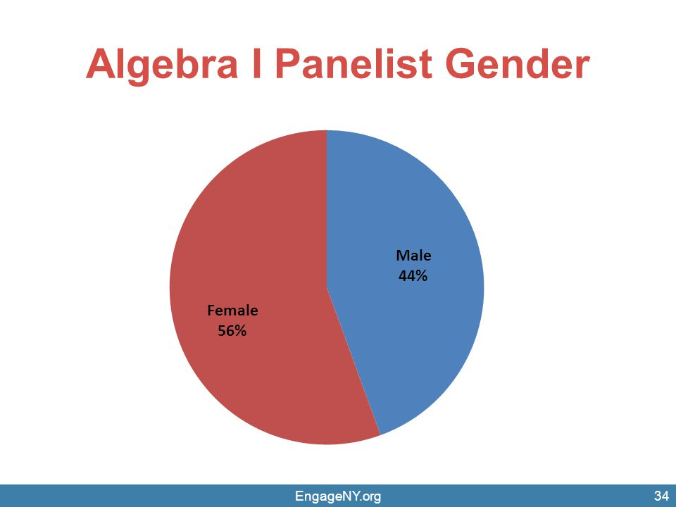 Algebra I Panelist Gender
