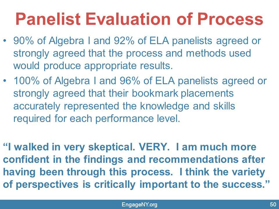 Panelist Evaluation of Process