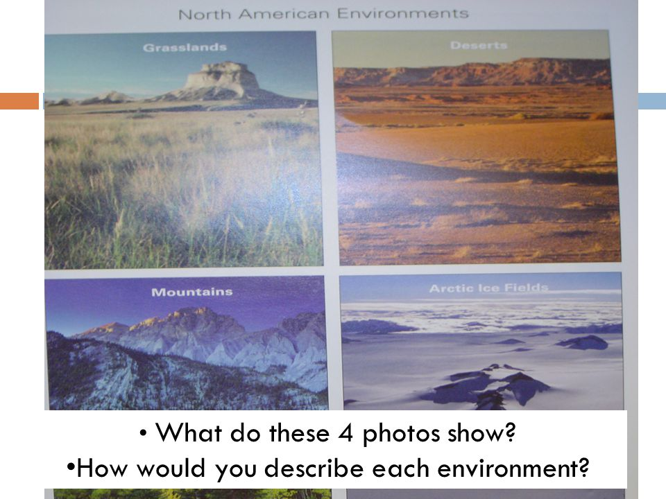 How would you describe each environment