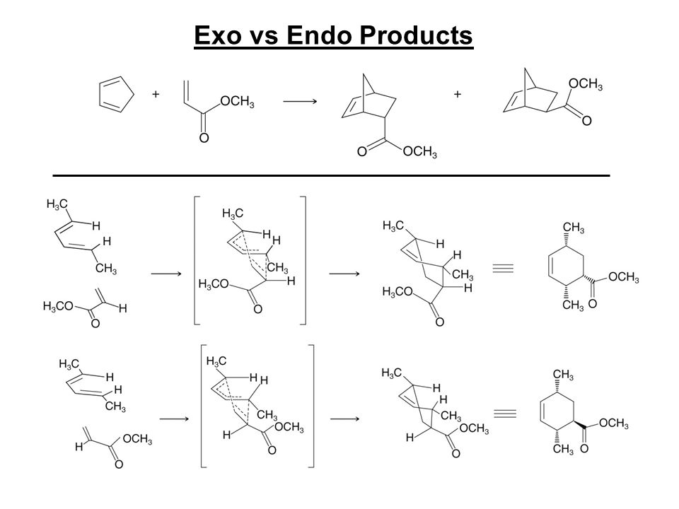 Exo vs Endo Products