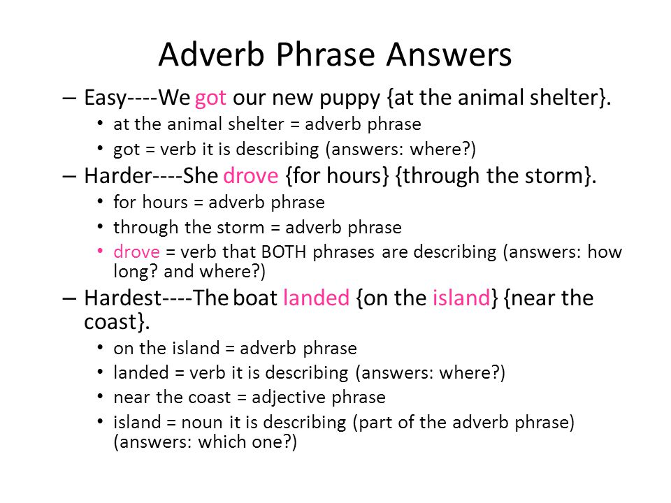 Adverb Phrase Answers Easy----We got our new puppy {at the animal shelter}. at the animal shelter = adverb phrase.