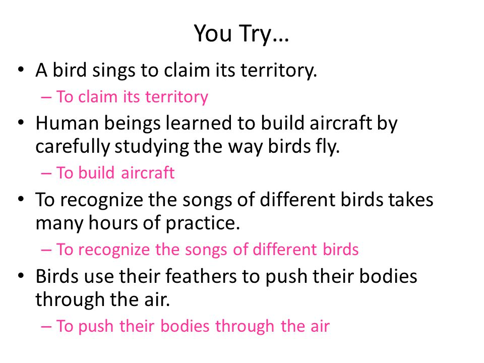 You Try… A bird sings to claim its territory.