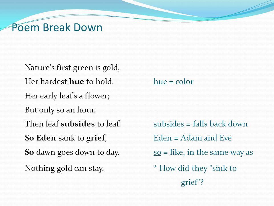 Poem Break Down