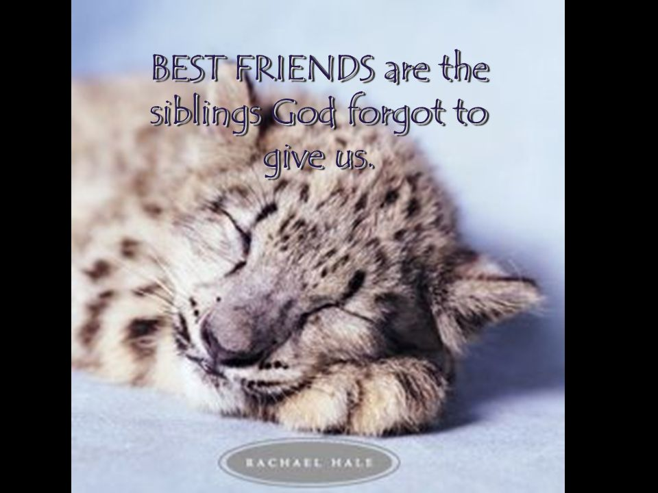 BEST FRIENDS are the siblings God forgot to give us.