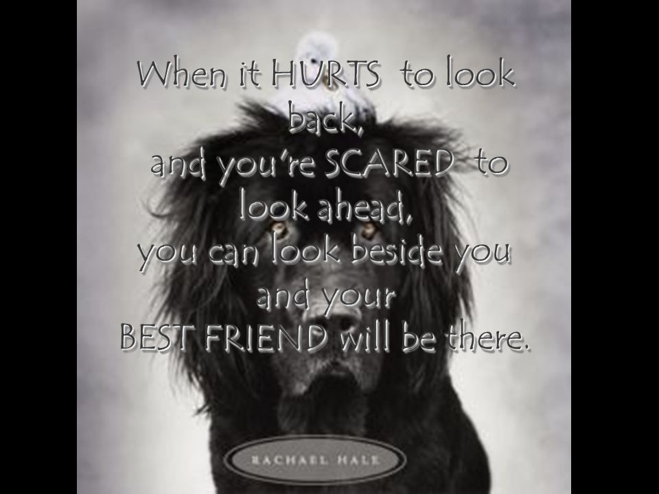 When it HURTS to look back, and you re SCARED to look ahead,