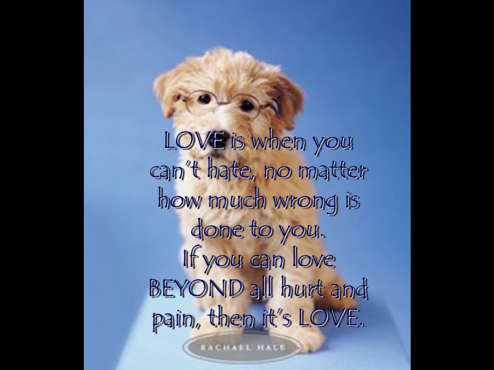LOVE is when you can't hate, no matter how much wrong is done to you.