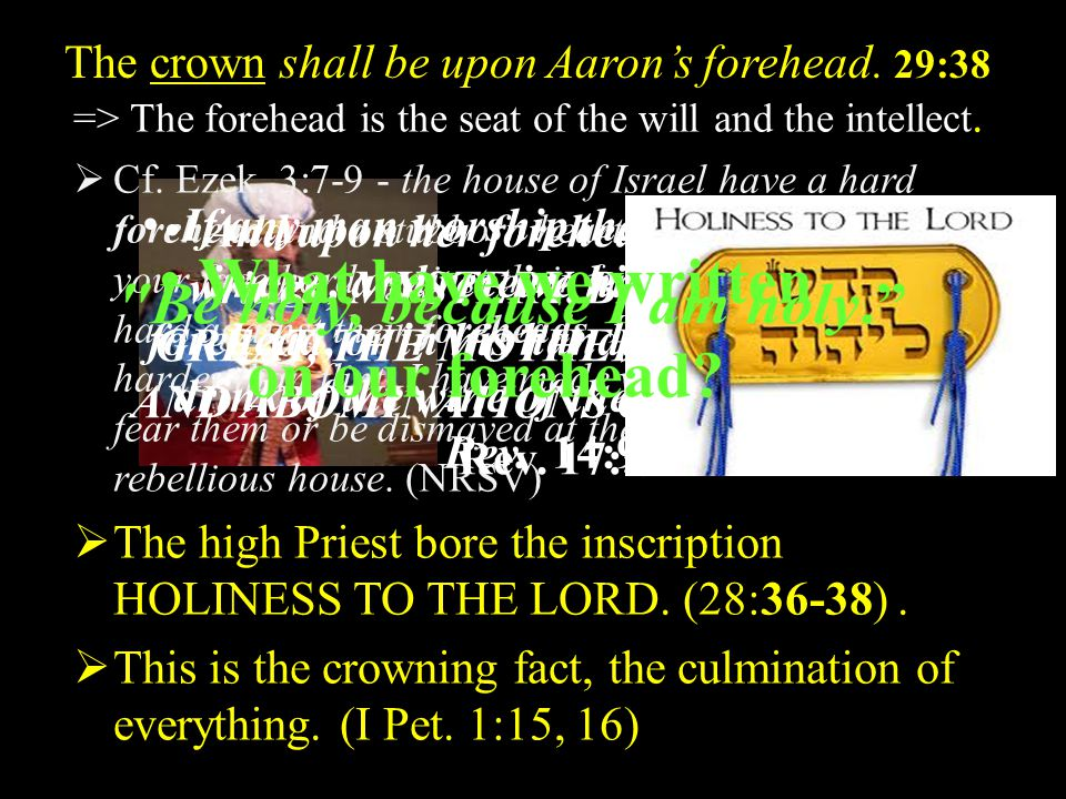 The crown shall be upon Aaron's forehead. 29:38