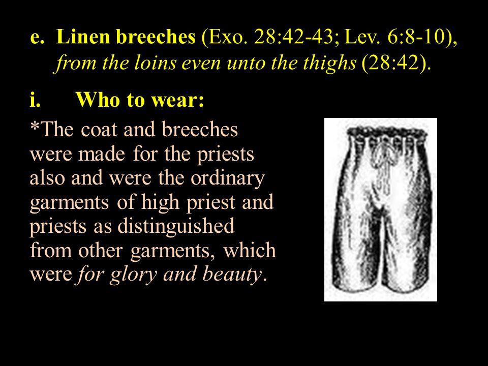 e. Linen breeches (Exo. 28:42-43; Lev
