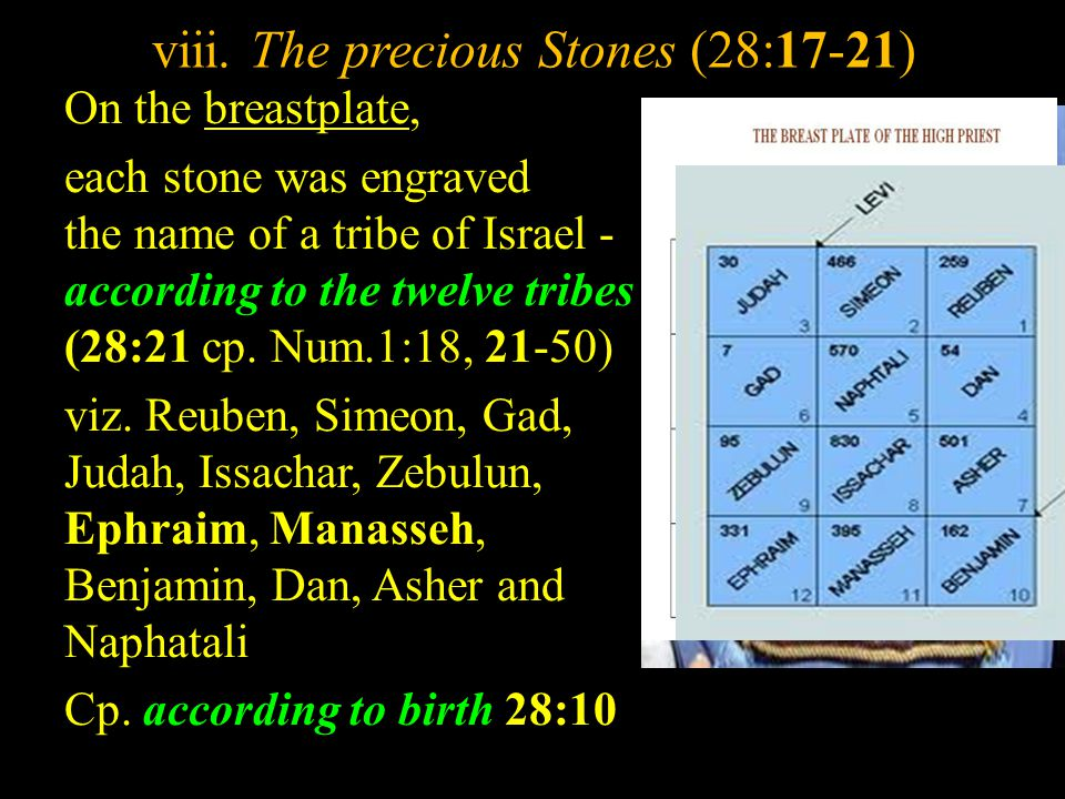 viii. The precious Stones (28:17-21)
