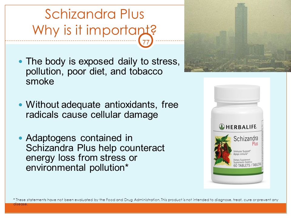 Schizandra Plus Why is it important