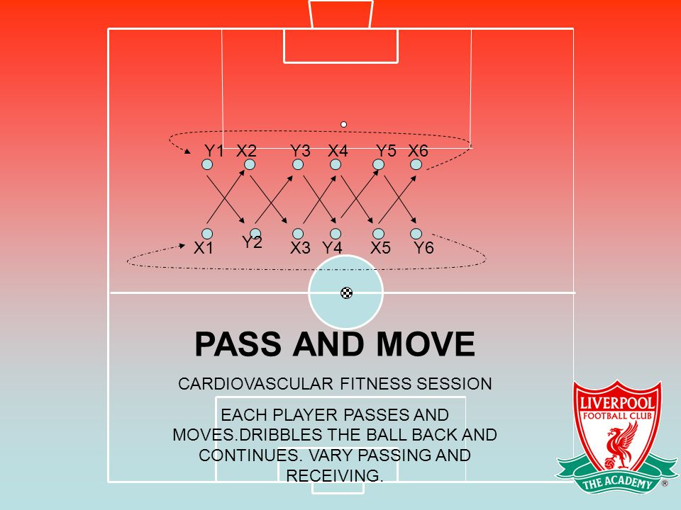 CARDIOVASCULAR FITNESS SESSION