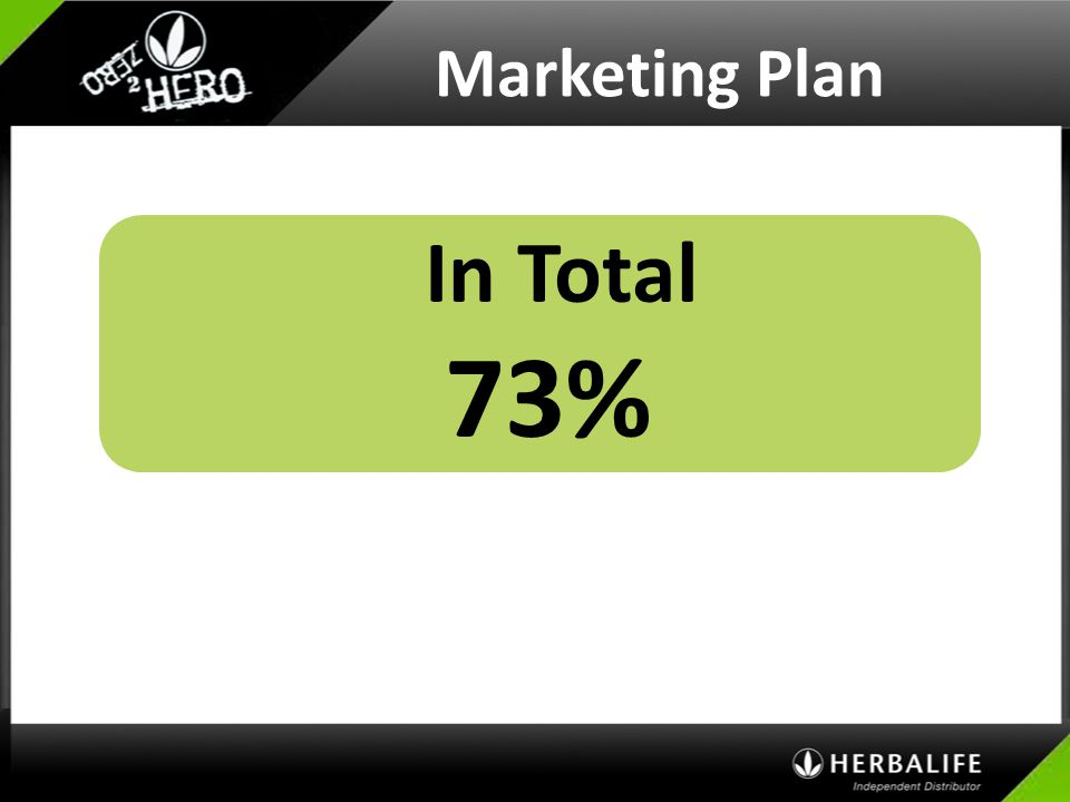 Marketing Plan In Total 73%
