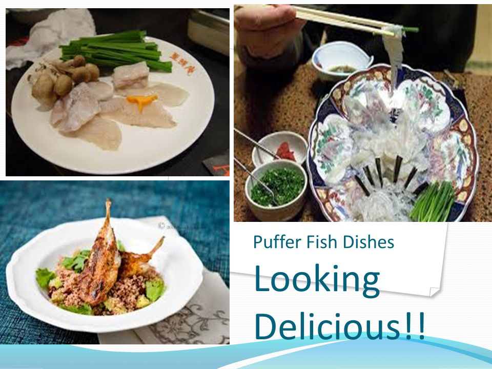 Puffer Fish Dishes Looking Delicious!!