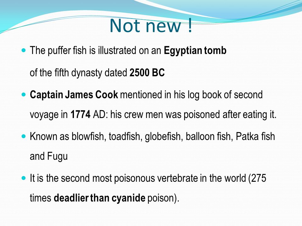 Not new ! The puffer fish is illustrated on an Egyptian tomb
