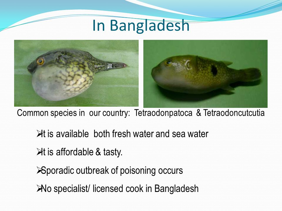 In Bangladesh It is available both fresh water and sea water