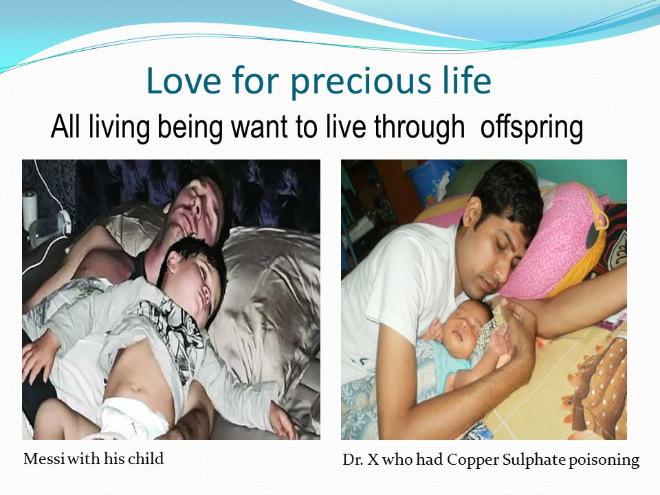 Love for precious life All living being want to live through offspring