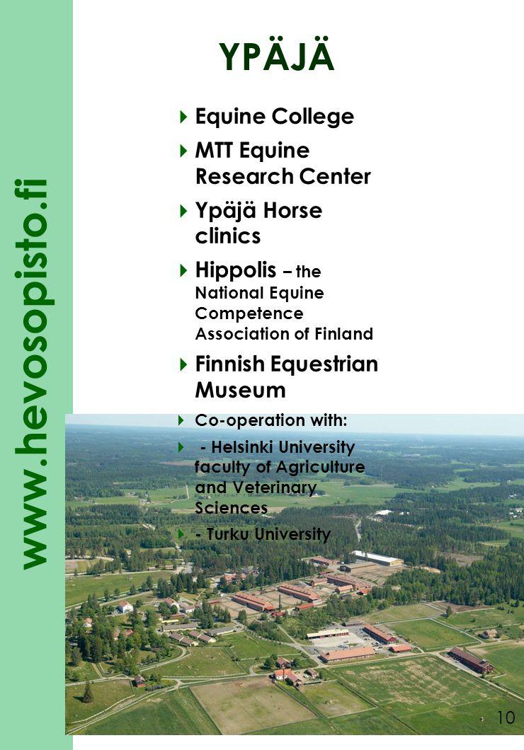 YPÄJÄ Equine College MTT Equine Research Center Ypäjä Horse clinics