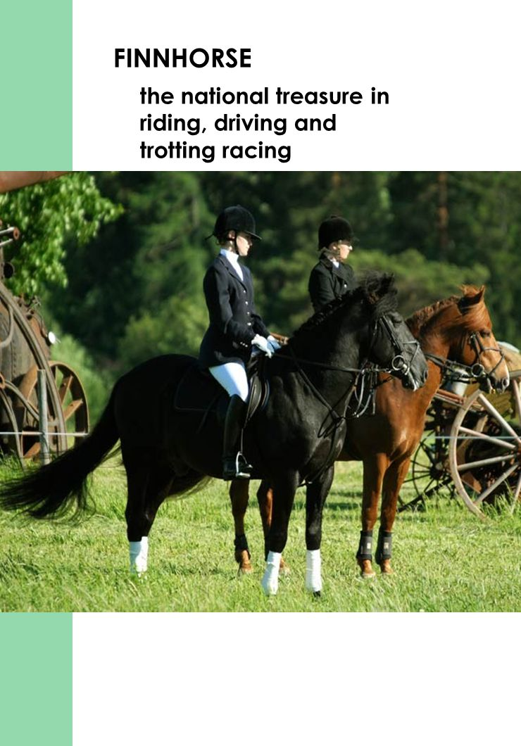 FINNHORSE the national treasure in riding, driving and trotting racing
