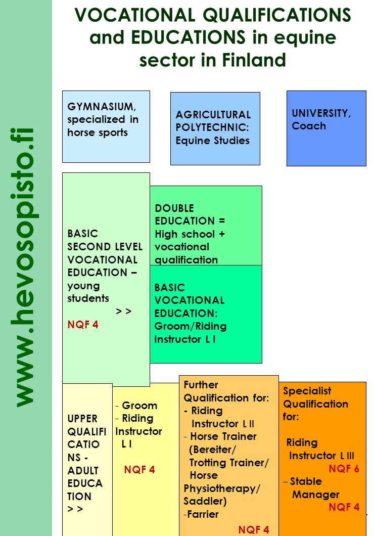 VOCATIONAL QUALIFICATIONS and EDUCATIONS in equine sector in Finland