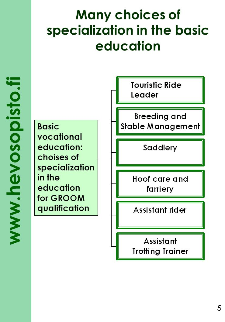 Many choices of specialization in the basic education