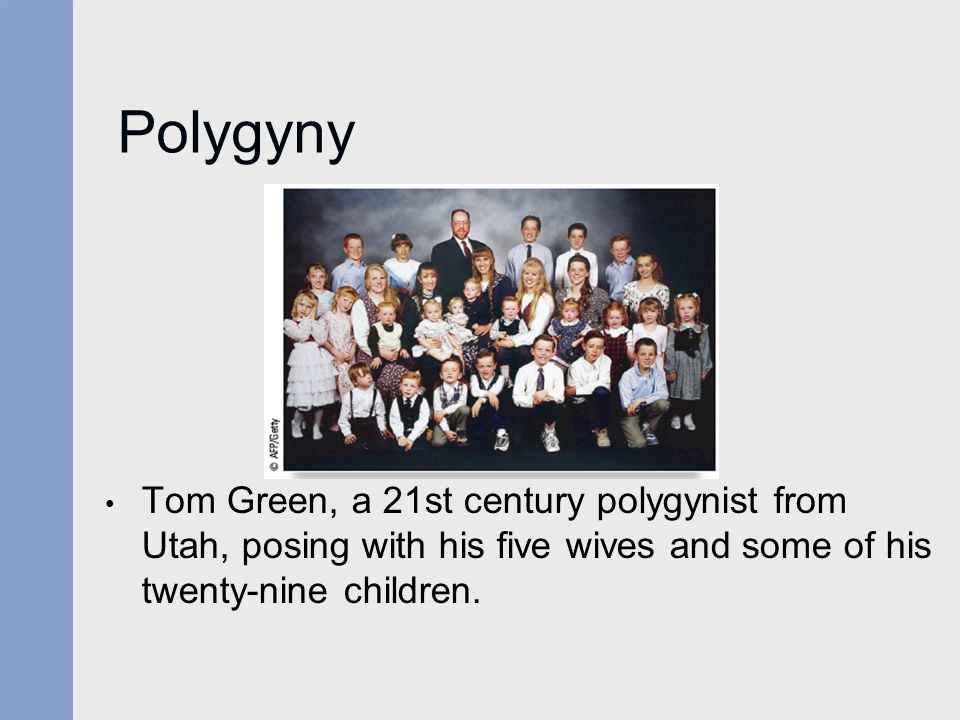 Polygyny Tom Green, a 21st century polygynist from Utah, posing with his five wives and some of his twenty-nine children.