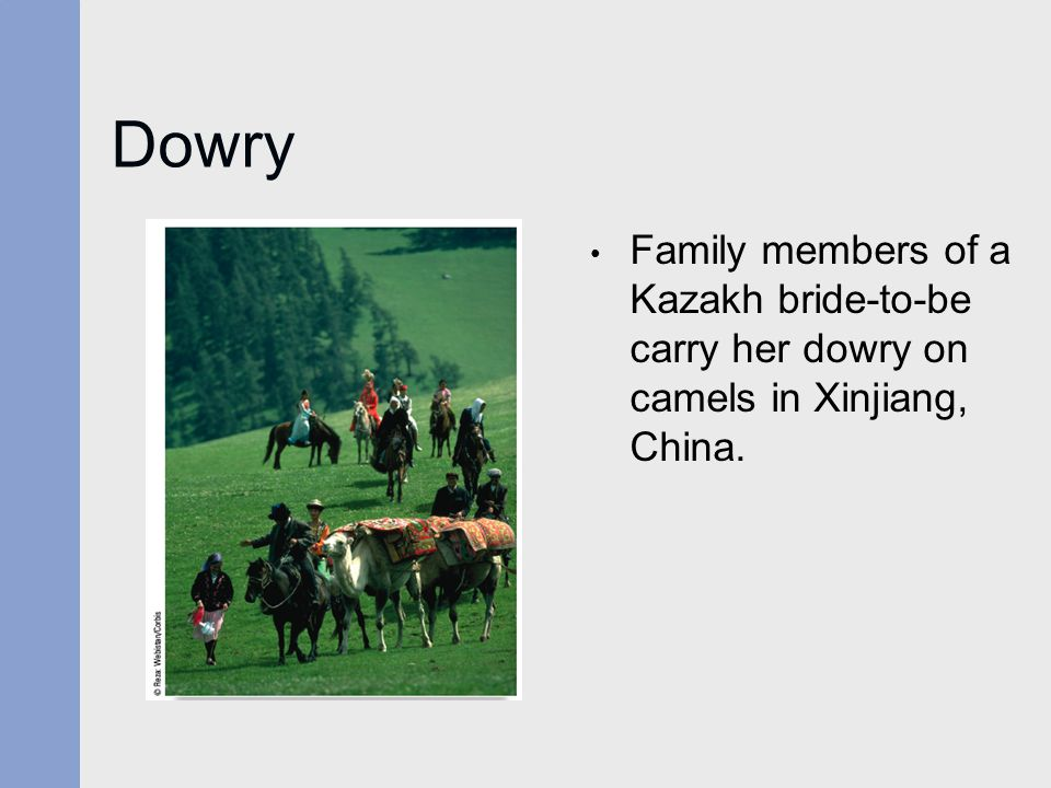 Dowry Family members of a Kazakh bride-to-be carry her dowry on camels in Xinjiang, China.