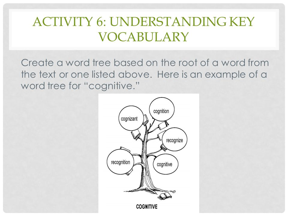 Activity 6: understanding key vocabulary