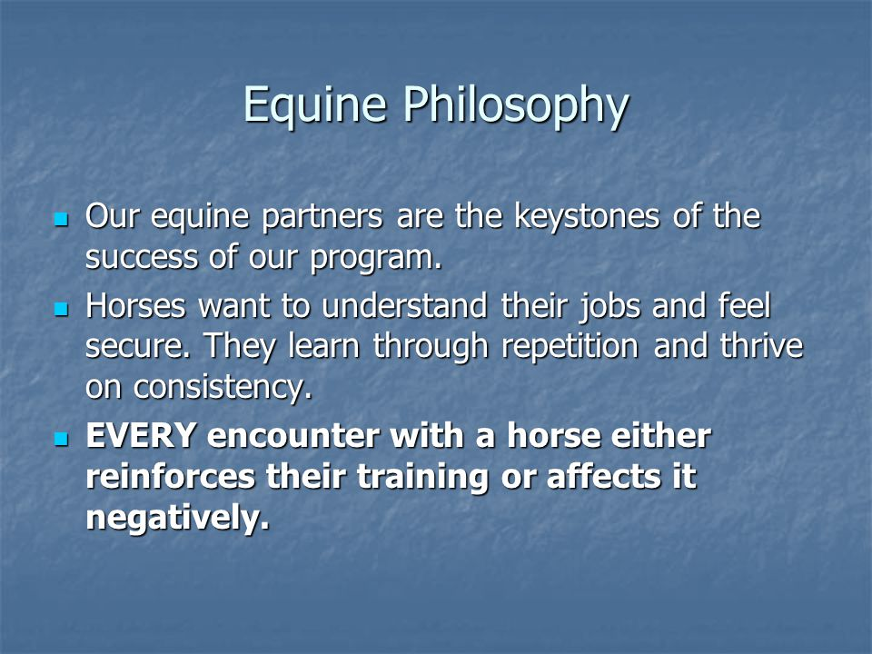 Equine Philosophy Our equine partners are the keystones of the success of our program.