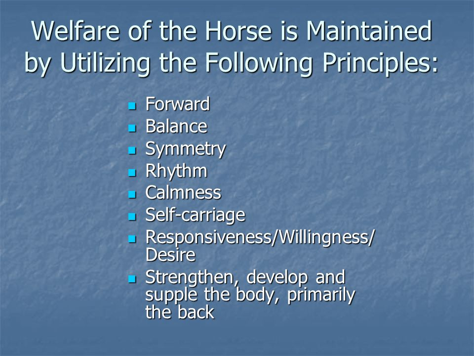 Welfare of the Horse is Maintained by Utilizing the Following Principles: