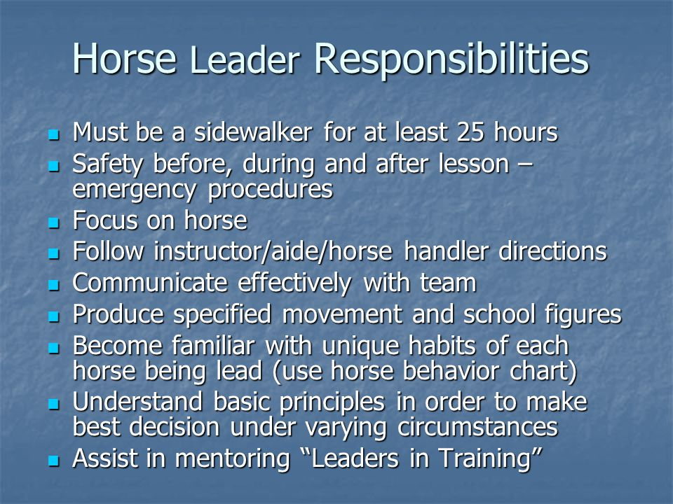 Horse Leader Responsibilities