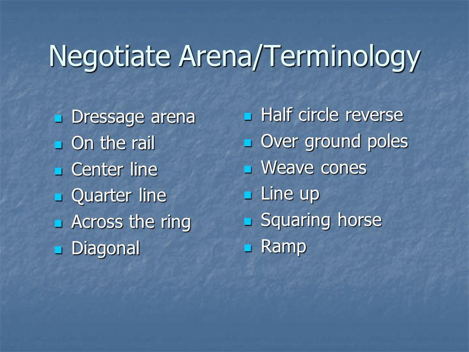 Negotiate Arena/Terminology