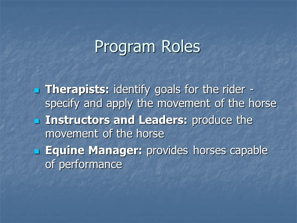 Program Roles Therapists: identify goals for the rider - specify and apply the movement of the horse.