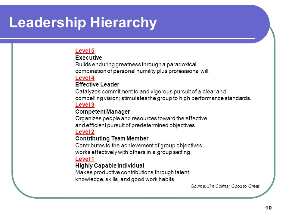 Leadership Hierarchy Level 5 Executive