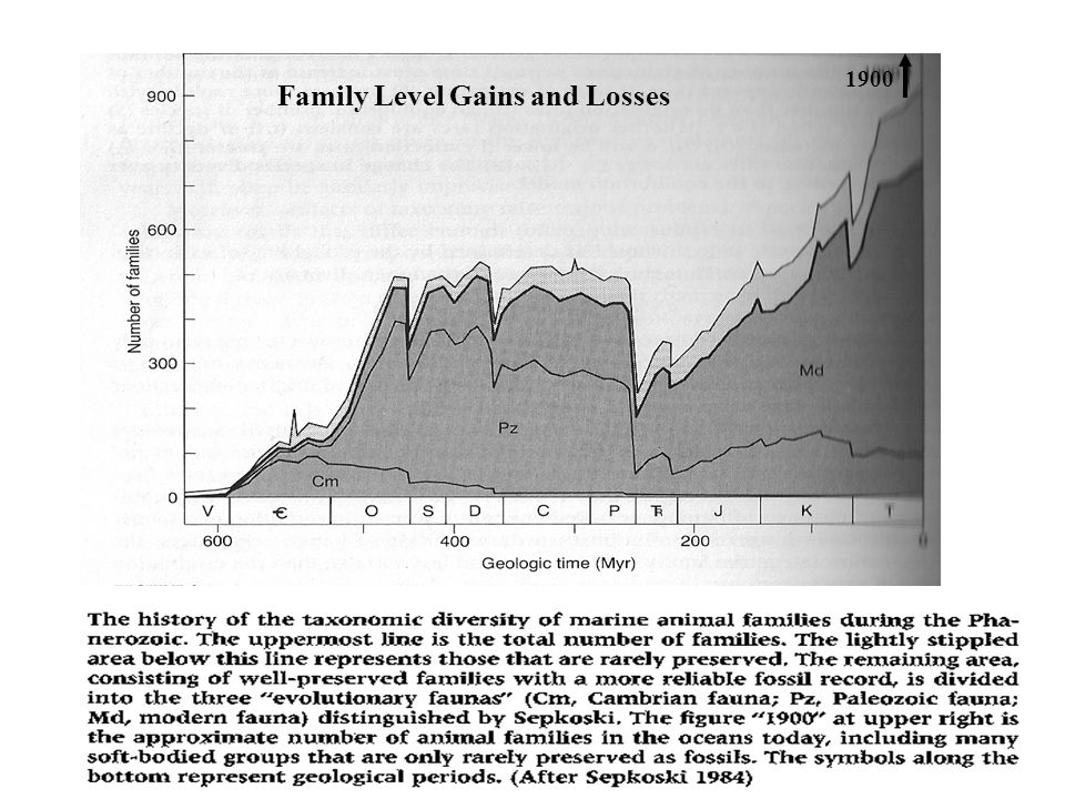 Family Level Gains and Losses