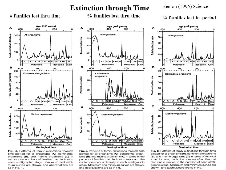 Extinction through Time