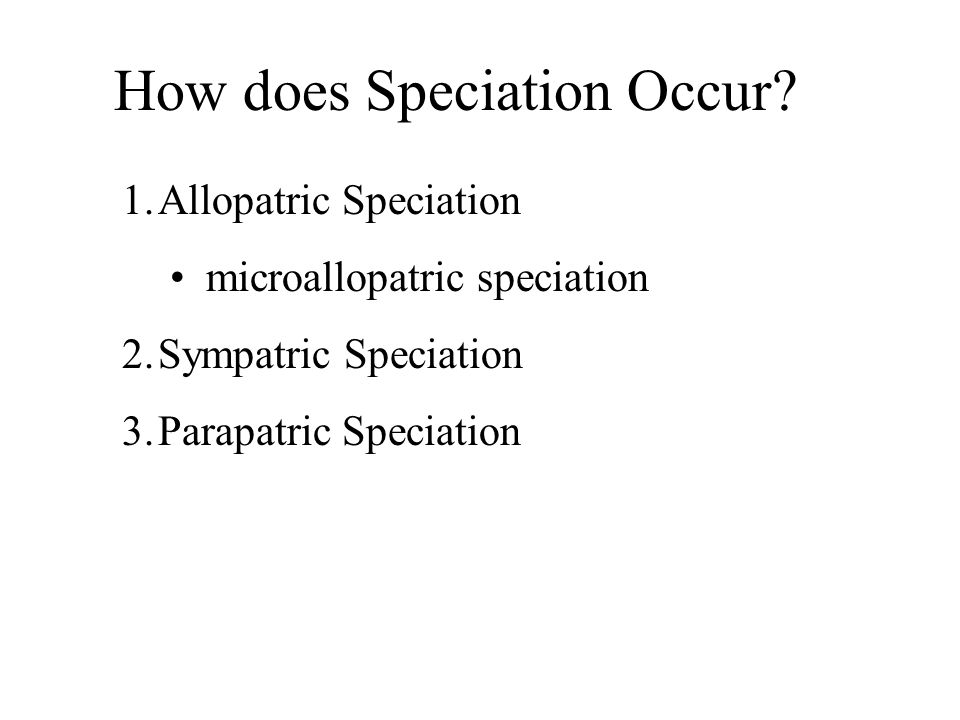 How does Speciation Occur