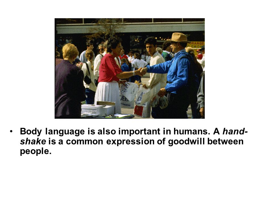 Body language is also important in humans