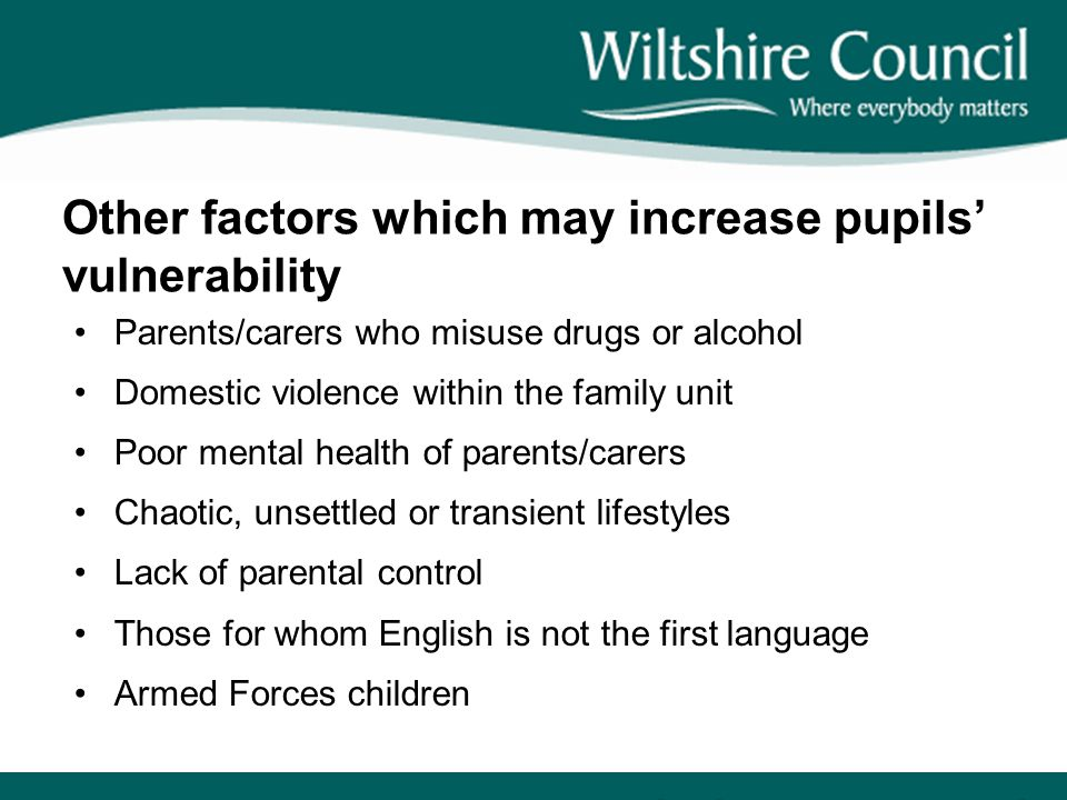 Other factors which may increase pupils' vulnerability