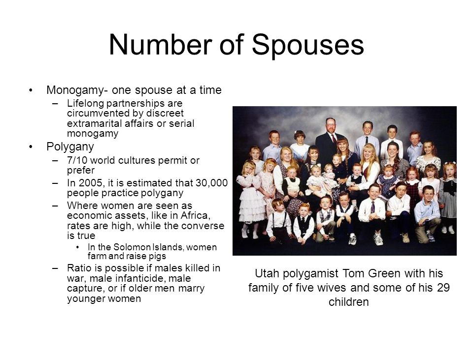 Number of Spouses Monogamy- one spouse at a time Polygany