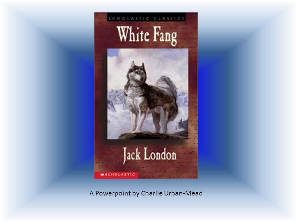 white fang jack london summary