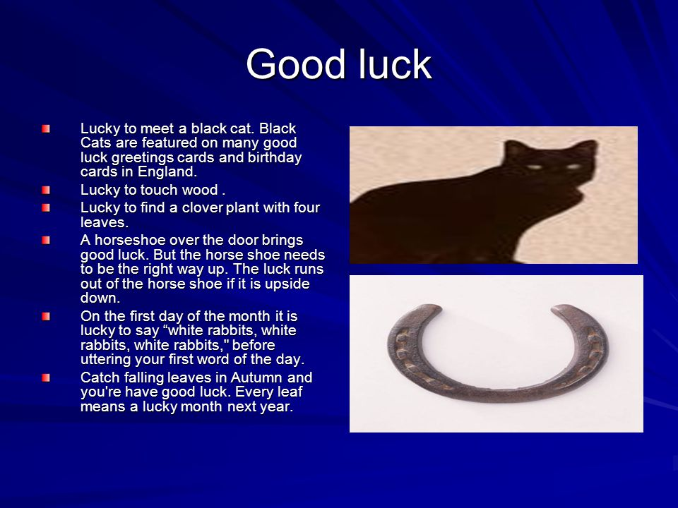 Good luck Lucky to meet a black cat. Black Cats are featured on many good luck greetings cards and birthday cards in England.