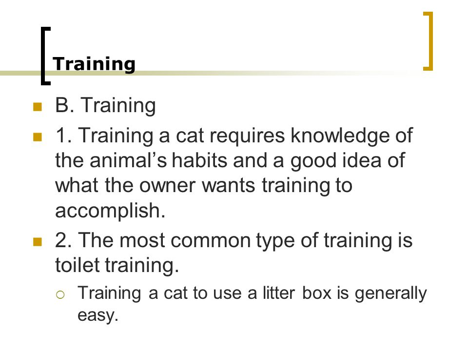 2. The most common type of training is toilet training.
